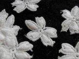 人気のコットン・花柄のケミカルモチーフレース 30枚